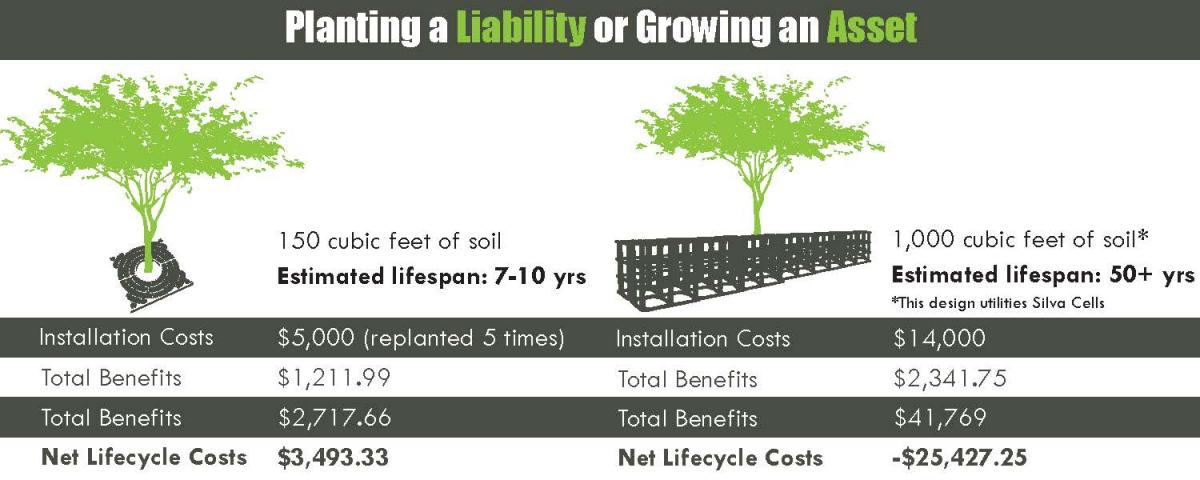 Asset vs. Liability, Trees