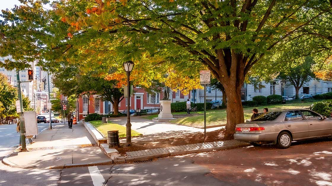 The Powerful Virtuous Cycles Of Street Trees Cnu