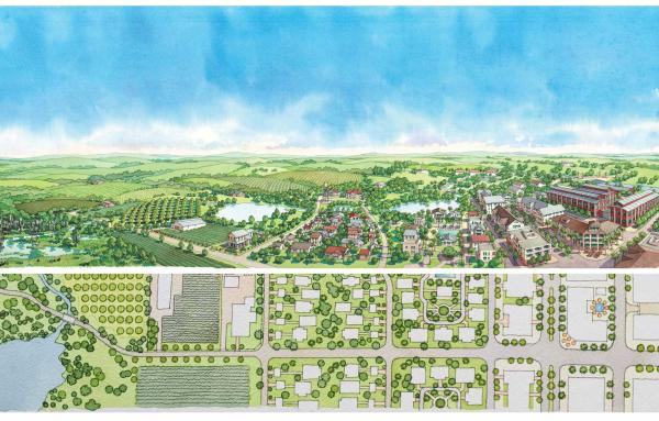 Article image for Transect-based plan and code for rural community