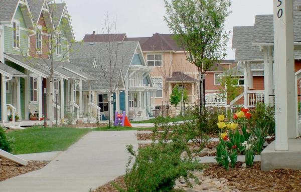 Article image for A diverse new neighborhood in the city