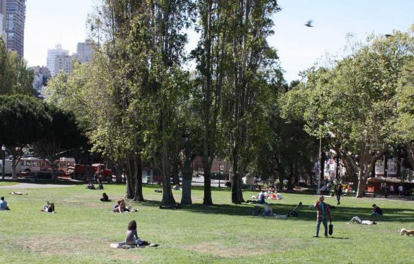 Article image for What makes a good urban park